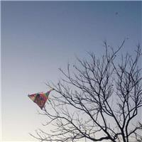 风筝断了线的句子 断线的风筝唯美句子
