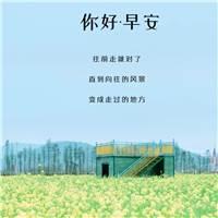早安正能量心语带图片带字#花朵#小清新
