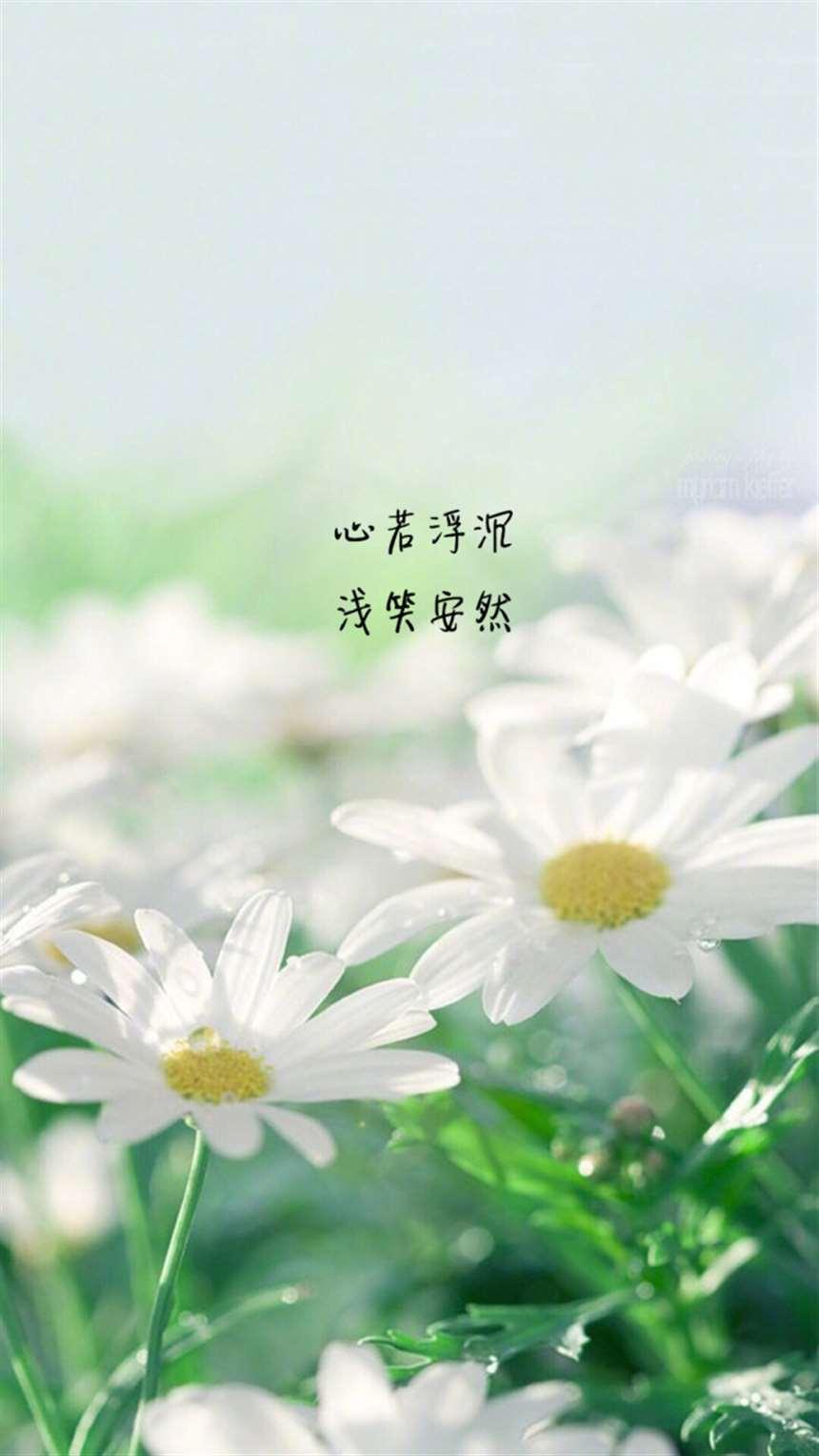 你是我枯水年纪里的一场雨#小清新#花朵#花草_配图大全
